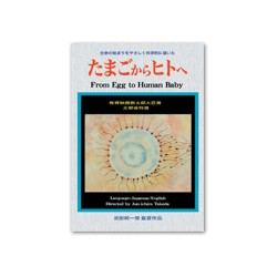 From Egg to Human Baby - DVD